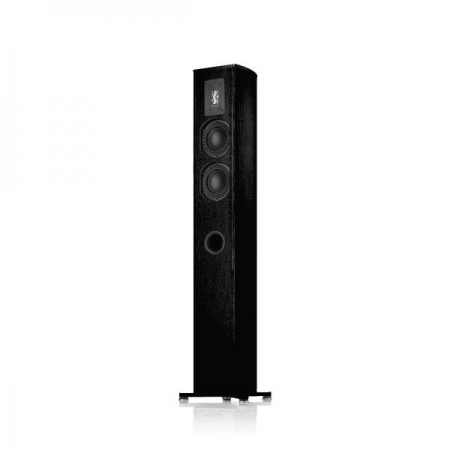 Piega Premium 501 Wireless