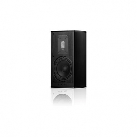 Piega Premium 301 Wireless