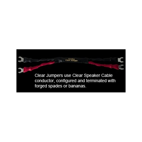 Cardas Audio Clear Speakers Jumpers - zworki clear speakers, cardas zworki, cardas jumpers